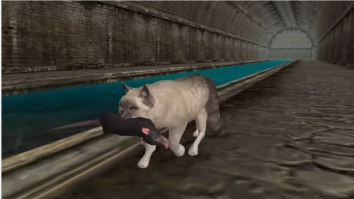 Ultimate Cat Simulator полная версия