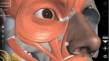 Анатомия - 3D Атлас полная версия (Мод все открыто)