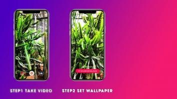 Video Wallpaper - Установить видео как обои взломанный (Мод pro)